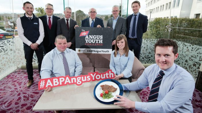 ABP Angus Youth Challenge Judges Announced